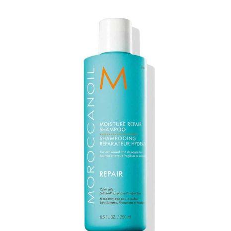 hair_moisturerepair_shampoo__10812.1520308269